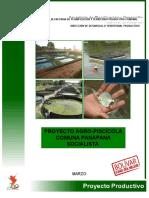 PROYECTO AGROPISCICOLA GENERAL MANUEL CEDEÑO.doc