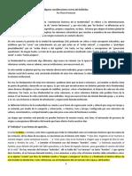 Peresson-Flavio-Algunas Consideraciones Acerca Del Individuo