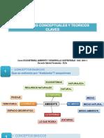 Presentación 1. Aspectos Conceptuales y Teoricos_Curso Ecosistemas Ambiente y DS_2016I