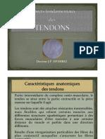 Aspects Fondamentaux Des Tendons JP Diverrez