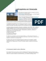 La Industria Petroquímica en Venezuela