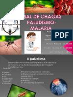 Chagas y Paludismo. Presentacion