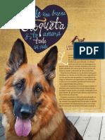 Lab_AlimentoPerros_Enero_2016-Profeco.pdf