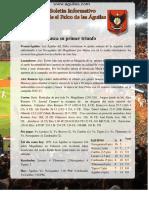 Aguilas-Boletin-Dic-14-2015.pdf