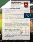 Aguilas-Boletin-Dic-20-2014.pdf