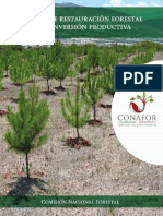 Manual de Restauración Forestal y Reconversión Productiva