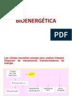001-BIOENERGÉTICA