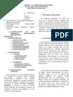 11. Parasitosis Intestinal