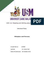Individual Essay