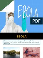 ppt ebola.pptx