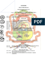 rof_munichuschi_2011.pdf