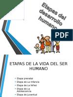 ETAPAS DEL DESARROLLO HUMANO.ppt
