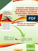 Fuentes Primarias de Variabilidad Genética en Plantas Cultivadas