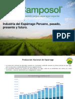 Pasado y Presente de la industria del Espárrago Peruano