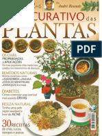 Revista Quot o Poder Curativo Das Plantas Quot Por Andre Resende