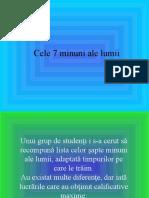 Cele_7_minuni_ale_lumii
