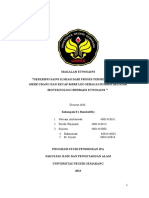 ETNOSAINS_HASIL_OBSERVASI_REVISI.docx
