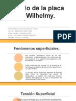 Método de La Placa de Wilhelmy