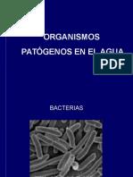 Organism Os