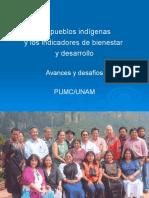 Los Pueblos Indigenas Investigacion