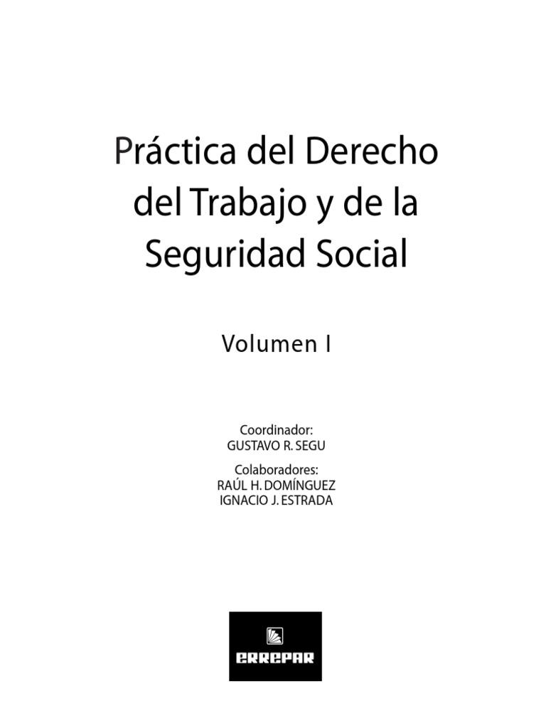 Practica Derecho Del Trabajo - Volumen 1 -Errepar