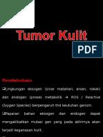 15. Dr. Stanley - Kuliah Blok KBK Integumen 2011 Tumor Kulit