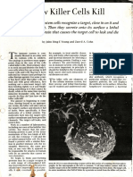 How killer cells kill.pdf