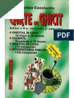 Carte de Ghicit - Cristina Constantin - Ghicitul in Carti
