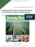 Budidaya Bawang Merah Dengan Biji Sebagai Solusi Mahalnya Ongkos Produksi Bawang _ Waras Farm