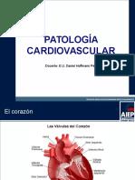 - Patologia Cardiovascular