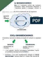cicli biogeochimicief