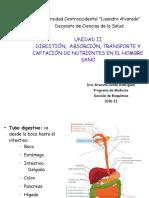 Digestion Absorcion Medicina 1 Digesti Ón y Absorci Ón