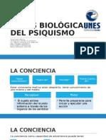 Bases Biológicas Del Psiquismo