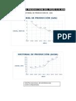 Historial de Produccion Del Pozo s r x06