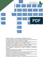 Leche Liconsa Estructura Organizacional
