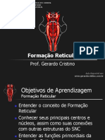 T4 Formacao Reticular
