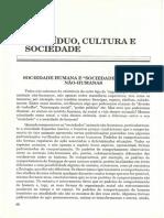 Sociedade humanas
