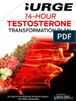 24-Hour Testosterone Transformation Fix