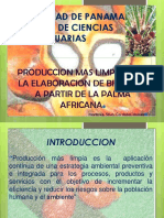 Produccionmaslimpia Palmaafricana 101006130331 Phpapp02
