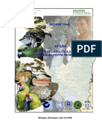 nic_esp Nicaragua.pdf