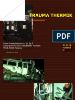 2013, EP, Trauma Thermik