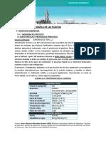2.Informe Final de Amoniaco