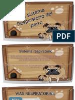 El sistema Respiratorio del perro.pptx