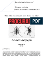 Proje to Dengue