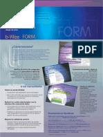 b_wize_form