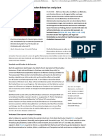 Biotechnologie.de - Aktuelles - Giftcocktail Der Leuchtenden Bakterien Analysiert