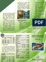 Leaflet Budidaya Ikan Lele Teknologi Bioflok