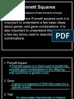 using punnett squares