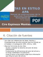 3.Citas APA 6.0