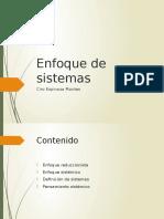 6.Enfoque de Sistemas